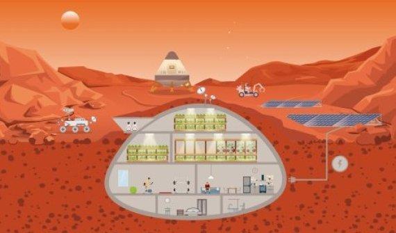 Plassen voor tuinbouw op Mars