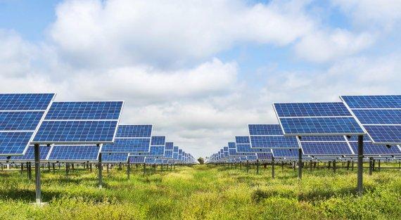 Studie naar ecologie zonneparken