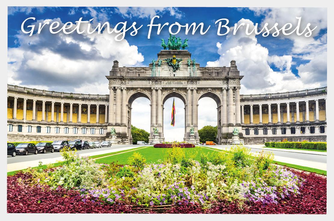Geld uit Brussel voor meer vogels en bloemen