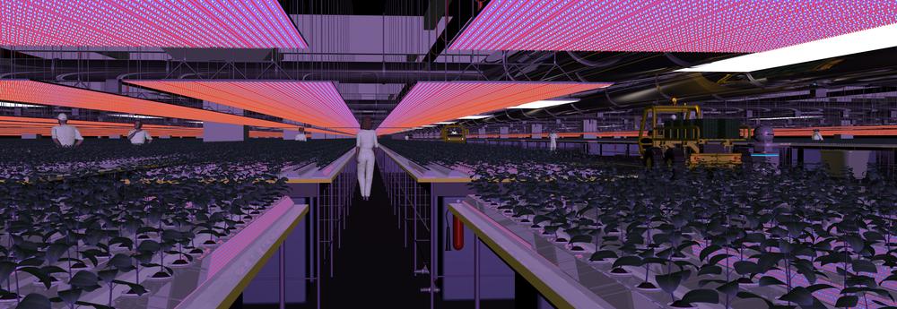 LED's kunnen planten weerbaarder maken