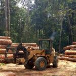 Ontbossing in het Amazonegebied