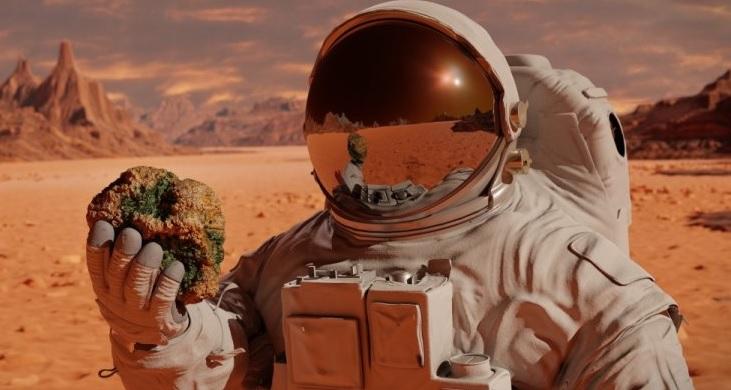 Wonen op Mars