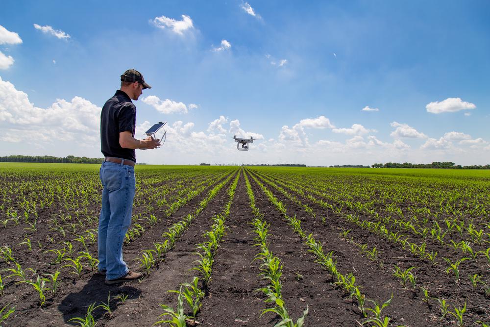 'Wildgroei aan software belemmert precisielandbouw'