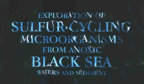 Bacteriën uit bodem Zwarte Zee